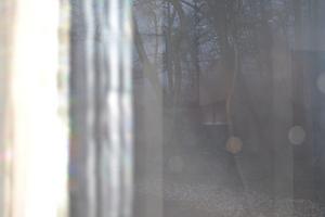 朝靄1.JPGのサムネール画像