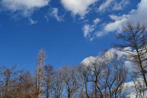 空.JPGのサムネール画像