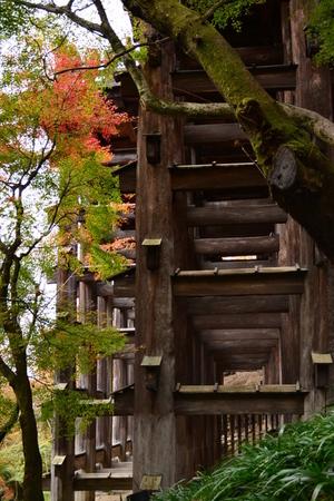 清水寺3.JPGのサムネール画像