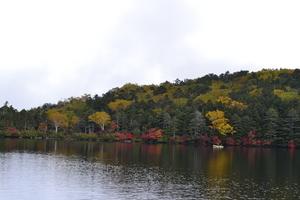 白駒池3.JPGのサムネール画像