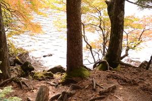 白駒池6.JPGのサムネール画像