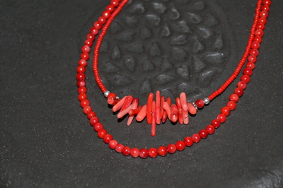 サザレ珊瑚.JPGのサムネール画像